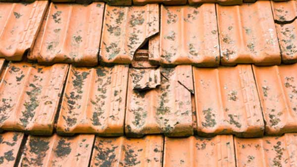Pitched Roof Repairs | Chimney Repointing | Missing ...